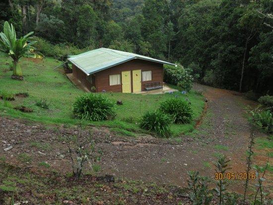 San Gerardo de Dota, Costa Rica: Entrada al sendero de robles primarios y cultivo de moras organicas