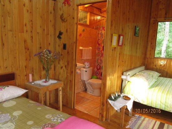San Gerardo de Dota, Costa Rica: Estas son casitas de madera con calefaccion baño privado en el bosque
