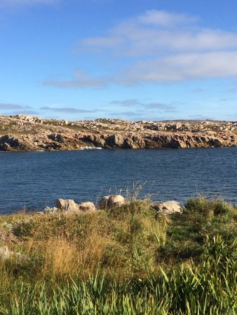 Joe Batt's Arm, Канада: View from the trail. These rocks are all along the coast. You pass one of the art studios.
