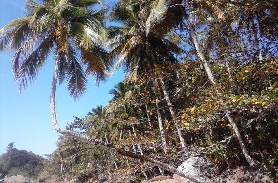 Pousada Tropicana: aventureiro una de las playas mas lindas
