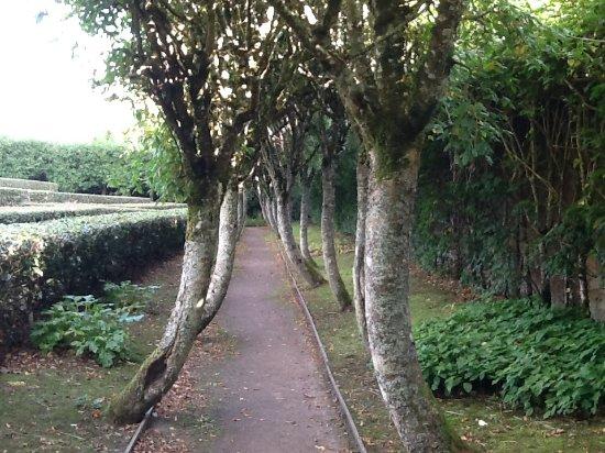 Nairn, UK: The gardens...