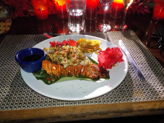 Al Natural Resort: The main course of the honeymoon dinner... the lobster was brought in by fishermen the same day.
