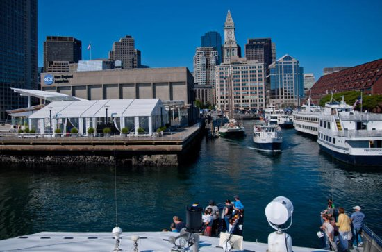 Boston Whale Watching and Aquarium Admission Combo Tour