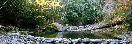Breitenbush Hot Springs Foto