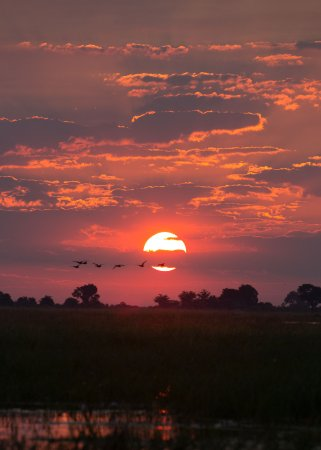 Kasane, Botsuana: Sunset on the Chobe River