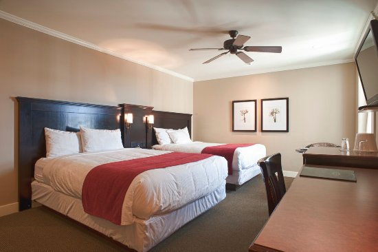 The Strathcona Hotel: Premium Quad