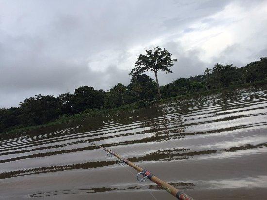 Boca Sabalos, นิการากัว: Al acecho