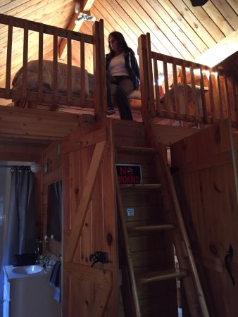 Katie's Cozy Cabins: photo1.jpg