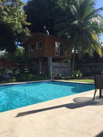 Playa Coronado, Panama: Good size pool and Spa below the Tree house
