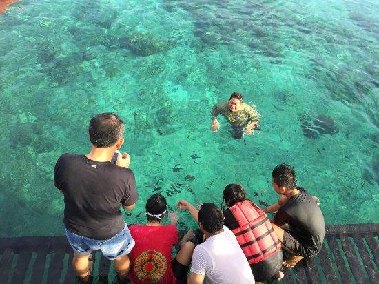 Pulau Derawan, Indonesia: jernih