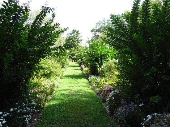 Frankfort, KY: walkway in the flower gardens