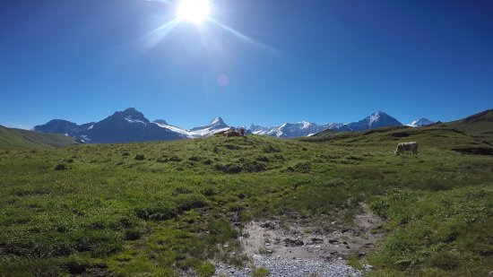 Grindelwald, Switzerland: On the hike to Bachalpsee