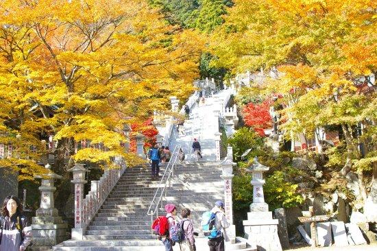 Isehara, Japón: 大山阿夫利神社下社の紅葉