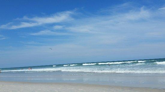 Ormond Beach, FL: 20160924_143715_large.jpg