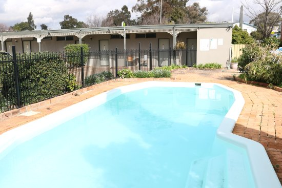 Muswellbrook, Australië: Cool down in our large outdoor swimming pool