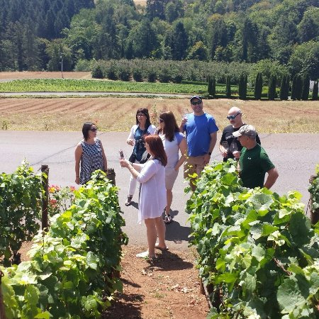 Yamhill, Oregón: Summit Wine Tours