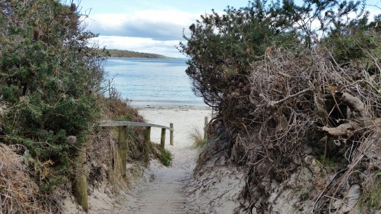 White Beach, Australia: Access to the beach