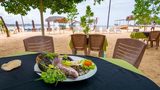 Seaview Deepal Villa: Hotel & grounds