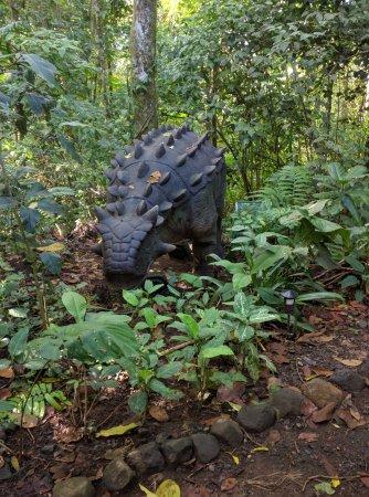 Rincon de La Vieja, Kosta Rika: Dinos