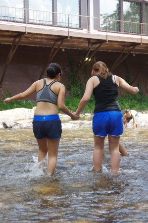 Chattahoochee River: WE WILL WORK TOGETHER TO CROSS TO THE OTHER SIDE