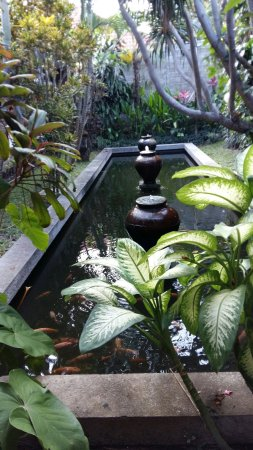 Бондовосо, Индонезия: 20160927_150144_large.jpg