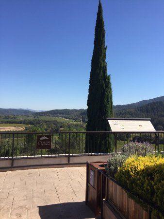 Sterling Vineyards: Breathtaking views only winery offering lift to the top.