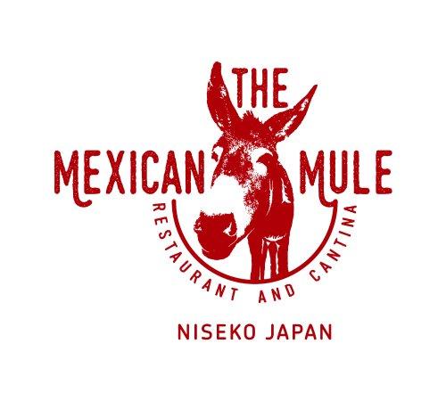 freeride lodge niseko serving up modern mexican food and drinks