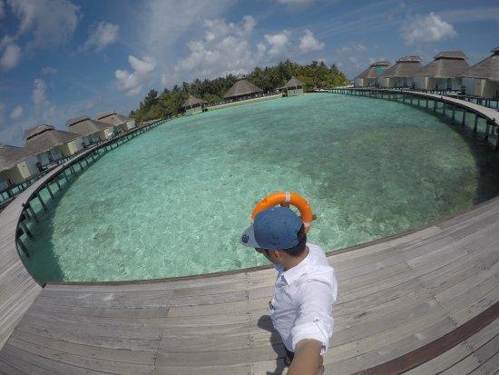 Ellaidhoo Maldives by Cinnamon Photo