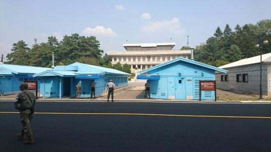 Paju, Sydkorea: DSC_1514_large.jpg