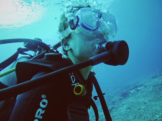 Back from diving foto van manta dive gili air resort - Manta dive gili air ...