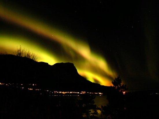 นาร์วิก, นอร์เวย์: Eurora Borealis in Narvik