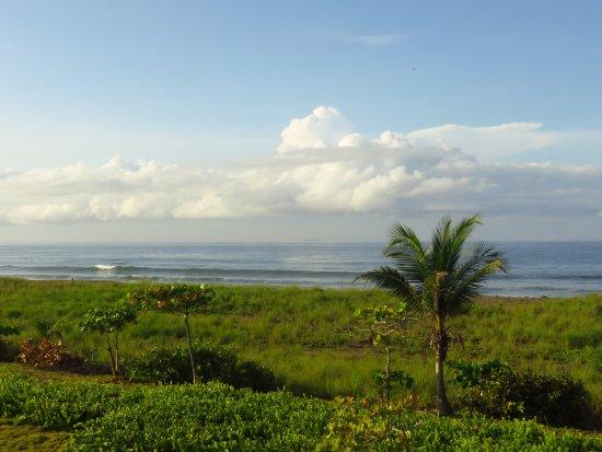 Hotel Las Olas Beach Resort-bild