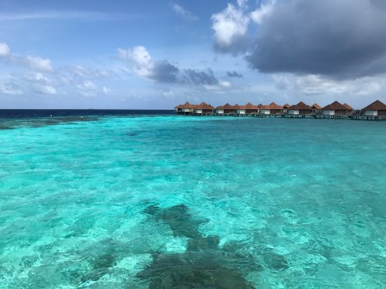 Robinson Club Maldives: Some pictures from September 2016
