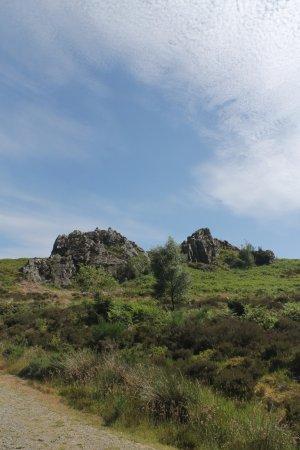 Craven Arms, UK: Nipstone Rock, Stiperstones