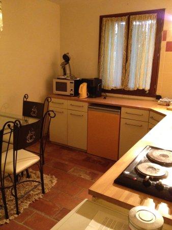 Roquefort-les-Pins, France : cuisine appartement 2 chambres