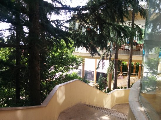Luna Hotel รูปภาพ