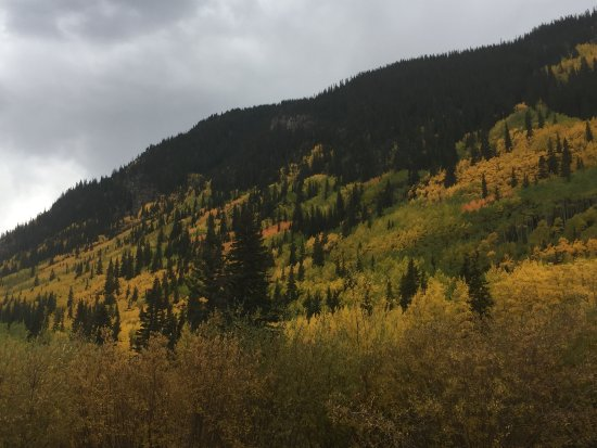 Georgetown, CO: View of the aspens!
