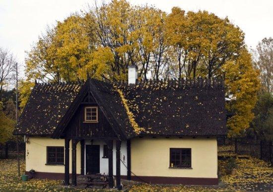 Chata Pod Klonami