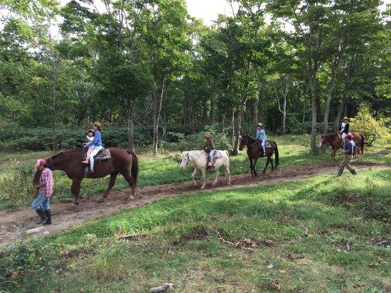 Niseko Horse Village: 乗馬ビレッジ