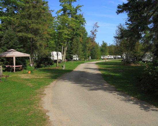 Bark River, MI: Looking East from site #9,
