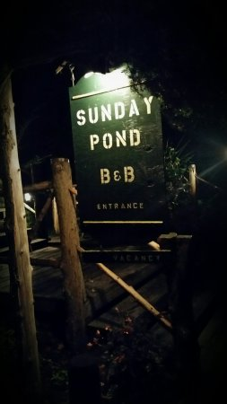 Sunday Pond Bed & Breakfast: 2016-09-23 23_large.jpg