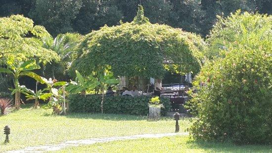Morinj, Montenegro: Один из вариантов открытой террасы. На территории ресторана-парка множество водоплавающих птиц.