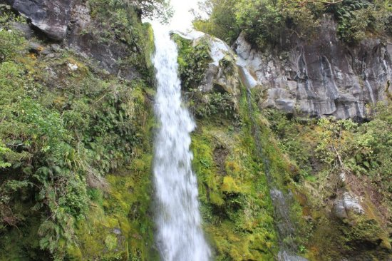 Dawson Falls: 瀑布沒有很大