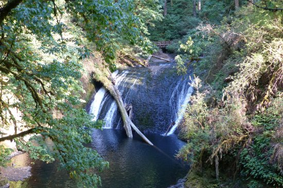 Sublimity, OR: Lower North Falls - 30 ft.