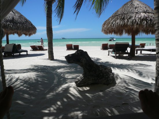 Holbox Hotel Casa las Tortugas - Petit Beach Hotel & Spa: view from one of the swinging beds with the hotel just behind