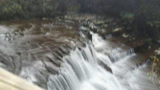 Делорейн, Австралия: Liffey Falls
