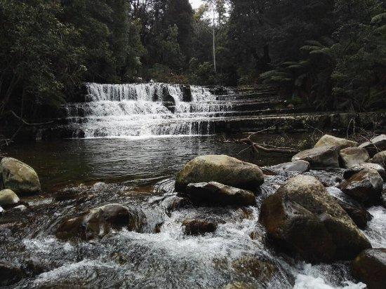 Deloraine, ออสเตรเลีย: Liffey Falls