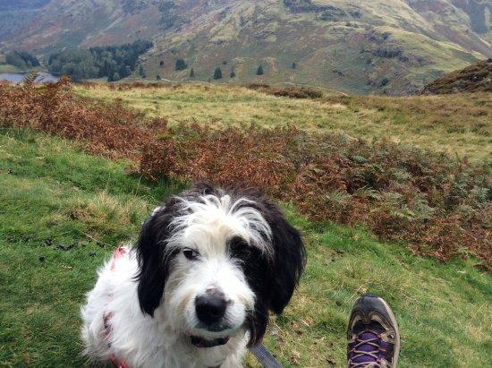 Glenridding, UK: Enjoying the views on our daily walks