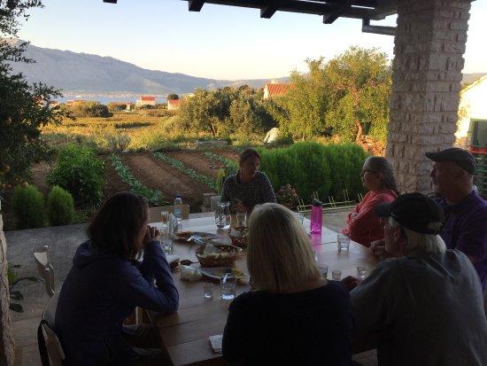 Korcula Island, Kroasia: Grk winery