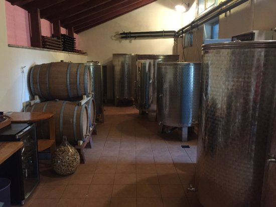 Korcula Island, Croazia: Grk winery